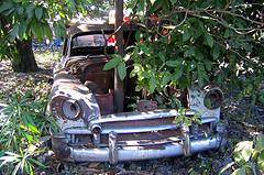 Car Scrapping Prices In Birkenhead